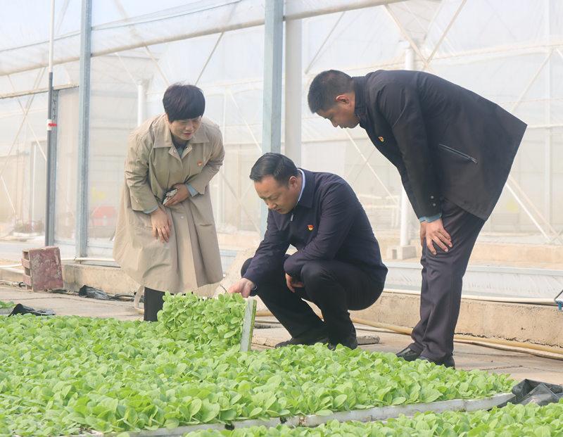 4月8日县长王景育调研农业生产相关工作.7_副本.jpg